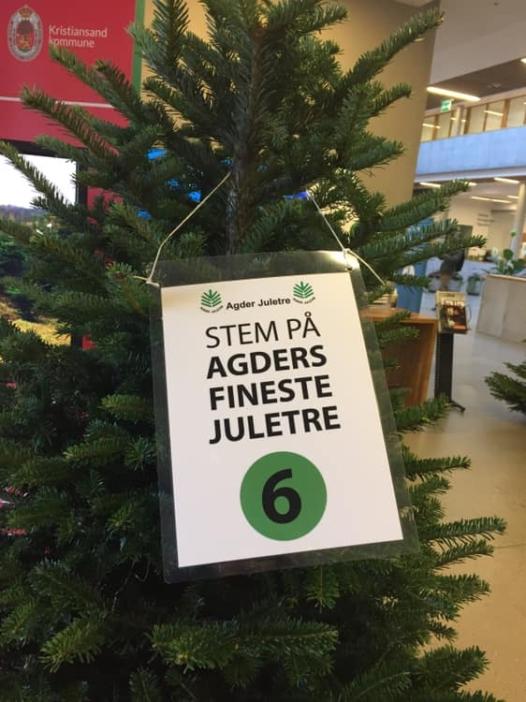 Juletre fra Reiersøl